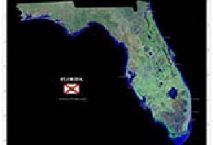 Florida State Mosaic